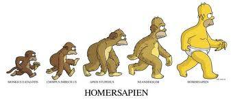 Evolution of Homersapiens