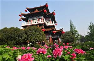 2012 Luoyang Peony Culture Festival to Kick off on April 5th