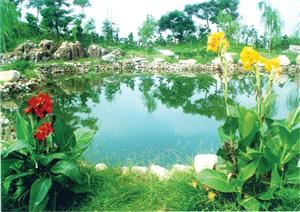 Shouguang Forest Ecological Garden