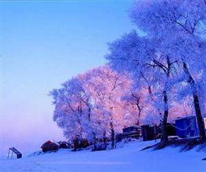 The 17th Jilin International Rime Ice and Snow Festival
