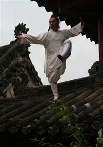 the origin of Taiji Quan