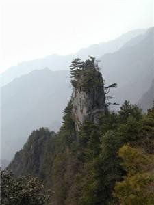 Tiantai Mountain Forest Park
