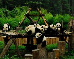 Chengdu and Guangzhou offer 72 hour free visa travels after Beijing and Shanghai in June in 2013