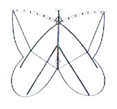 Step 4 of Making a Butterfly Kite