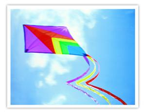 The Popular Categories of Chinese Kites