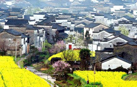 Wuyuan Travel