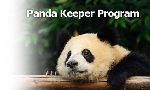 1 Day Panda Keeper Program in Dujiangyan Panda Valley; Tours