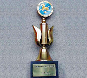 1992 China Tourism Association Outstanding Manager Award