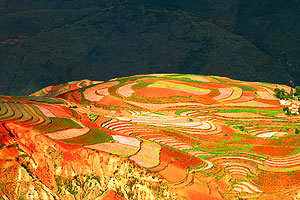 Dongchuan Red Land—the Amazing Land Art