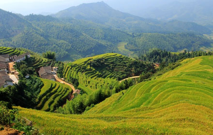 Shangbao Terraced Fields in Jiangxi Province
