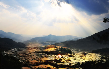 Yuanyang Terraced Rice Fields