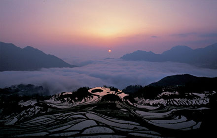 Longji Terraced Fields Scenic Area in Guilin