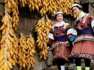 Miao Girls at Qingman Village