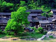Wooden Houses in Qingman Miao Village
