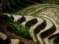 Views of Longji Rice Terrace