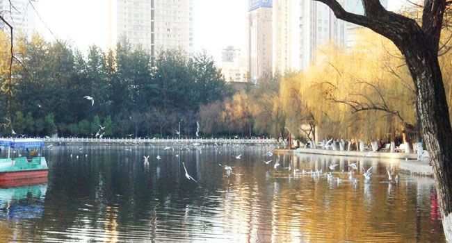 Kunming Green Lake Park