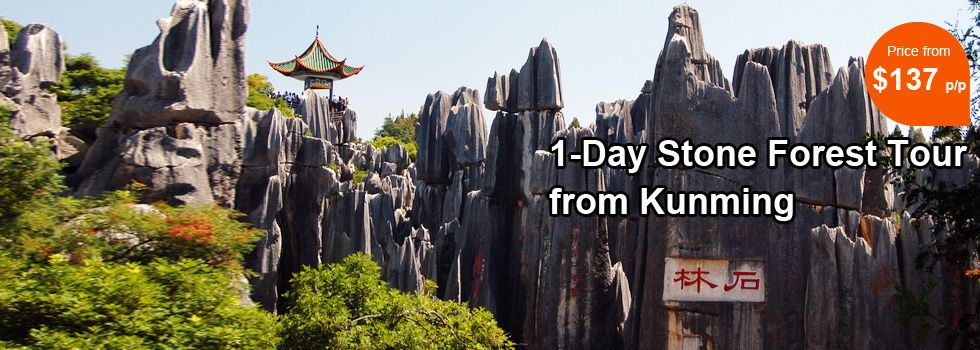 1-Day Private Stone Forest Tour from Kunming